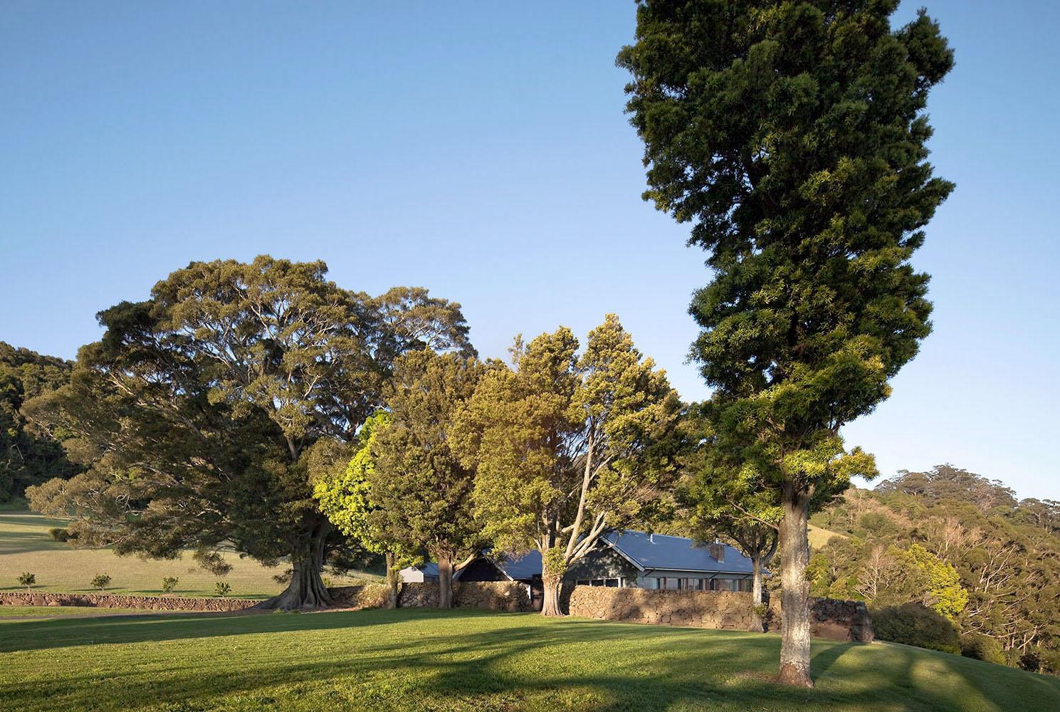 Tootawallin Saddleback Residence